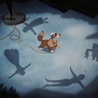 Episode 457 - Peter Pan Human-Animal Bonds I