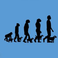 Episode 470 - The Evolution of Domestication